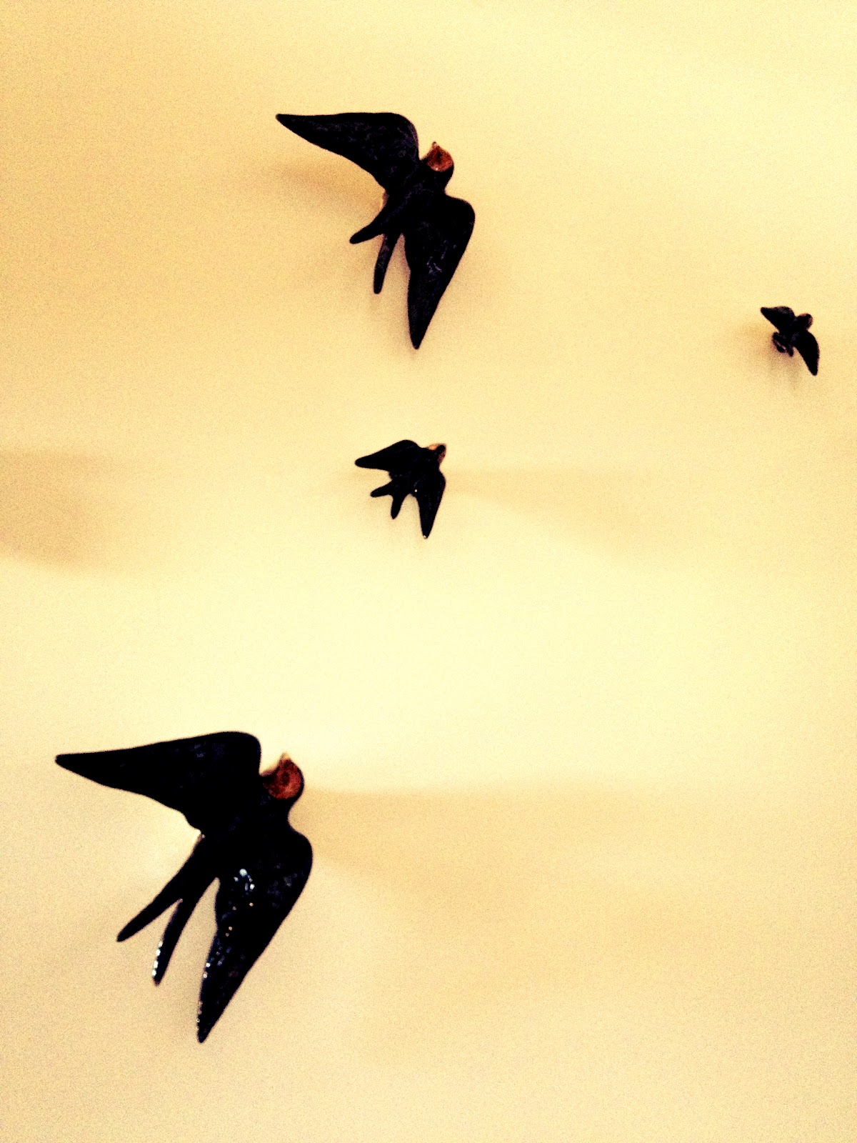 andorinhas