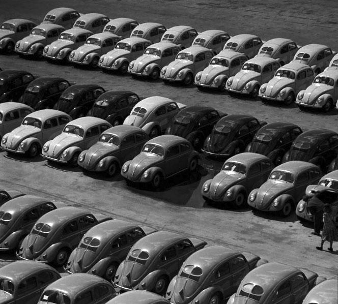 VW_PB_crop